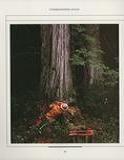THE ART OF WOODWORKING 木工艺术第6期第20张图片