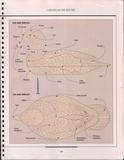 THE ART OF WOODWORKING 木工艺术第22期第102张图片