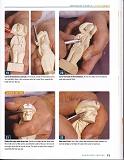 Caricature Carving第74张图片