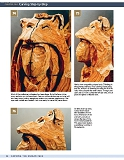 Carving the Human Face- Capturing Character and Expression in Wood第55张图片