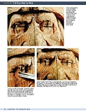 Carving the Human Face- Capturing Character and Expression in Wood第89张图片