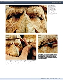 Carving the Human Face- Capturing Character and Expression in Wood第92张图片
