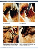 Carving the Human Face- Capturing Character and Expression in Wood第93张图片