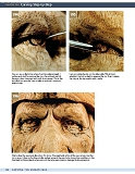 Carving the Human Face- Capturing Character and Expression in Wood第95张图片