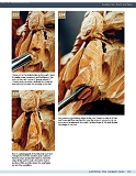 Carving the Human Face- Capturing Character and Expression in Wood第106张图片