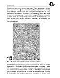 Rabotyi po derevu_木工。雕刻,曲线锯锯,木工手艺 2011第109张图片