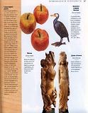 Rez'ba po derevu木雕。实用手册 2004第66张图片